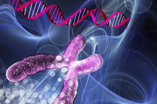 艾滋病有望被治愈!基因编辑成功清除小鼠体内HIV病毒